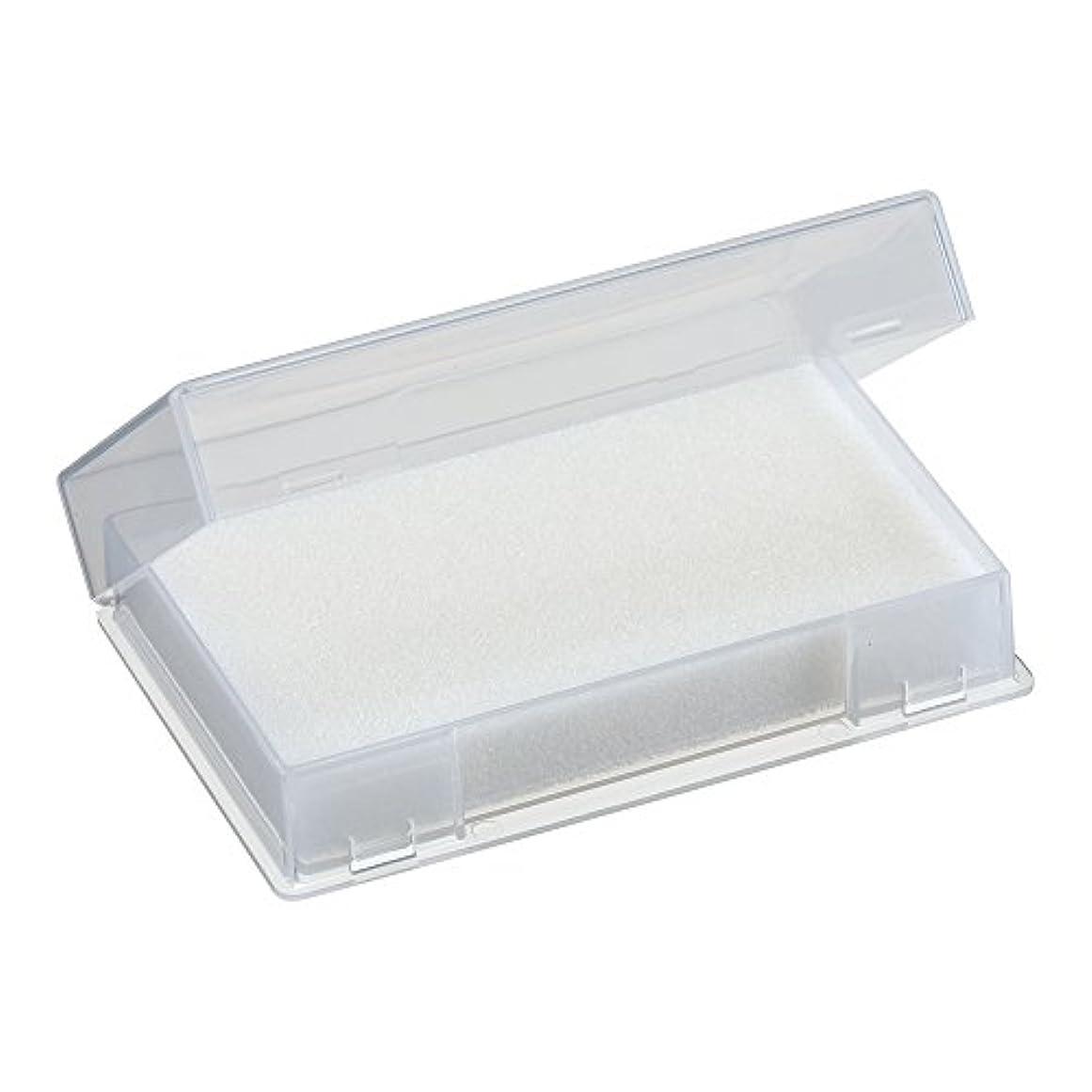 科学難しい空ネイルチップケース ホワイト