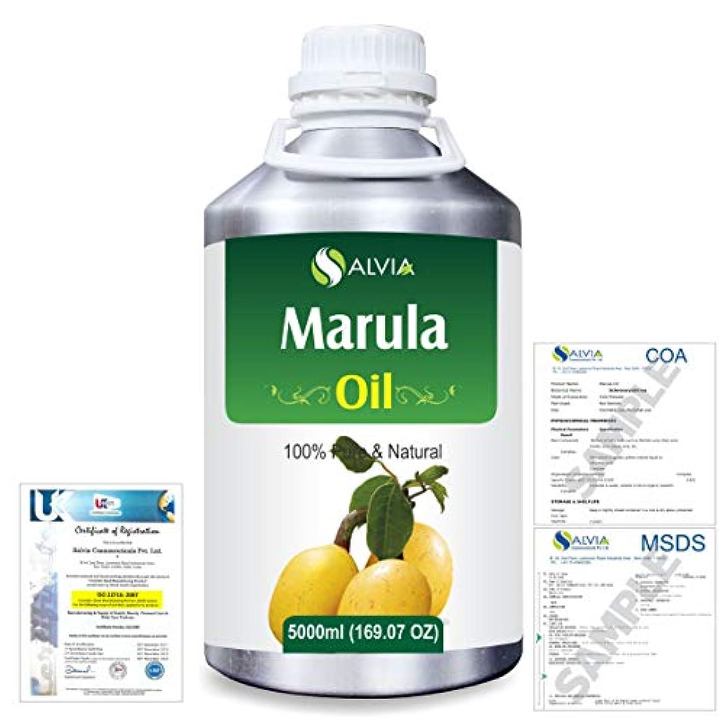 与えるクラック実用的Marula (Sclerocarya birrea) Natural Pure Undiluted Uncut Carrier Oil 5000ml/169 fl.oz.