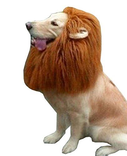 愛犬がライオンに大変身! 一瞬で王者感アップ!ペット用 たてがみ ウィッグ 変身 フード ネックウォーマー ワンちゃん用コスプレキャッ ウイッグ 帽子感覚で簡単装着 (M:首周り50-60cm)