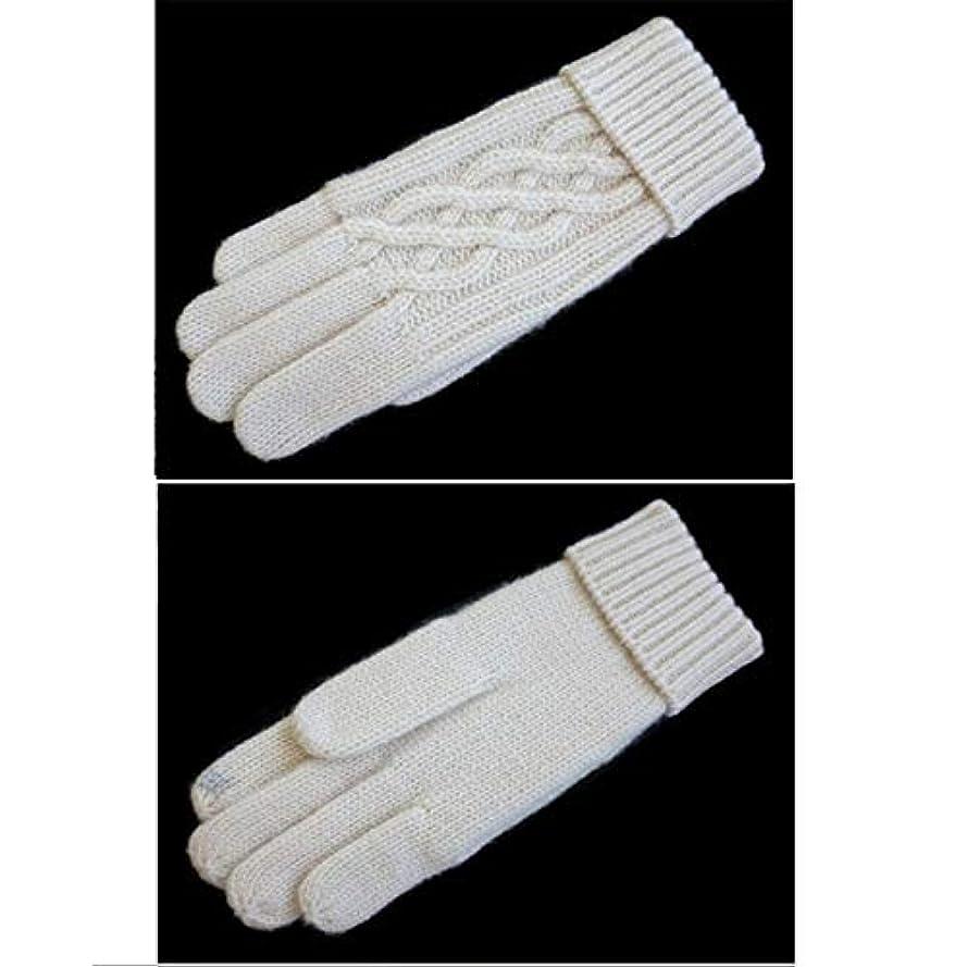 シャッフル距離予防接種GLJJQMY 女性の屋外手袋冬の自転車手袋暖かいニット手袋、グレー グローブ