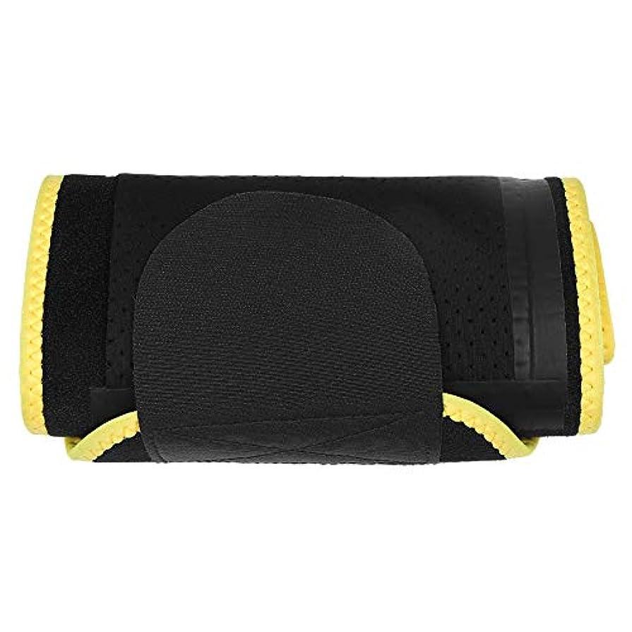 フィットネスサポートブレース、腰や体を保護するために使用され、腰への負担を軽減し、腰にダメージを与える腰部プロテクター。