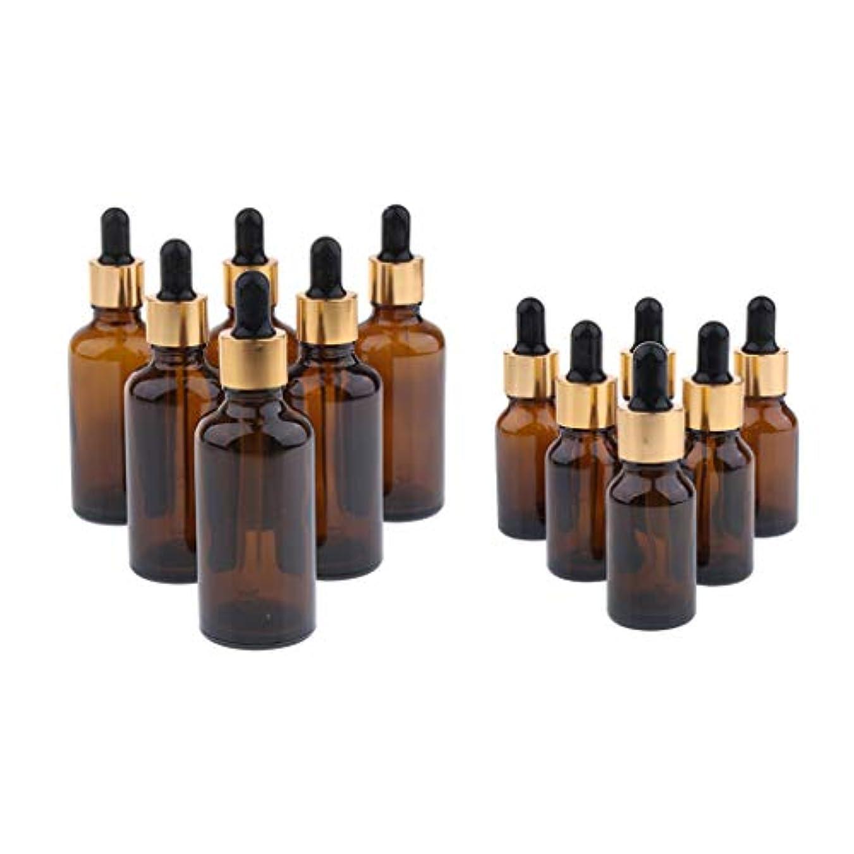 質素なシンボル抑止する12個 スポイトボトル 詰め替え容器 エッセンシャルオイル 液体貯蔵用ボトル 20ml+100ml