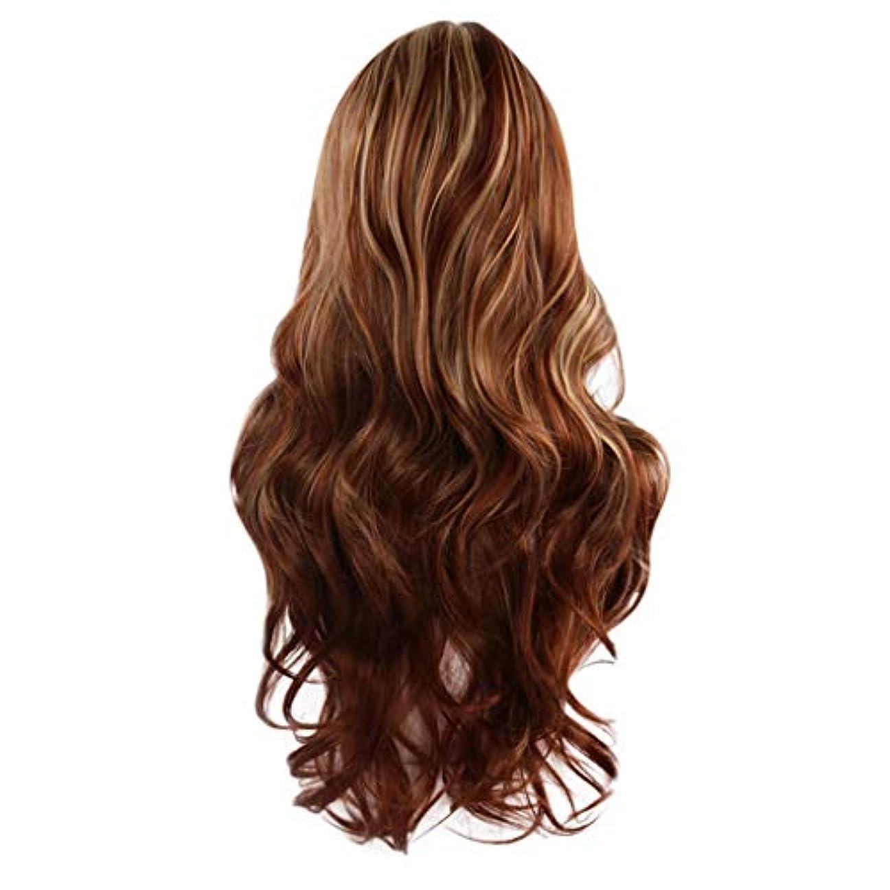 シリンダーシート人類女性の茶色の長いウェーブのかかった巻き毛のかつらフルウィッグローズネット