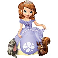 Anagram International Sofia The First Air Walker, Multicolor By Anagram