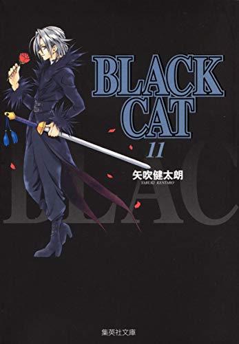 BLACK CAT 11 (集英社文庫―コミック版)の詳細を見る