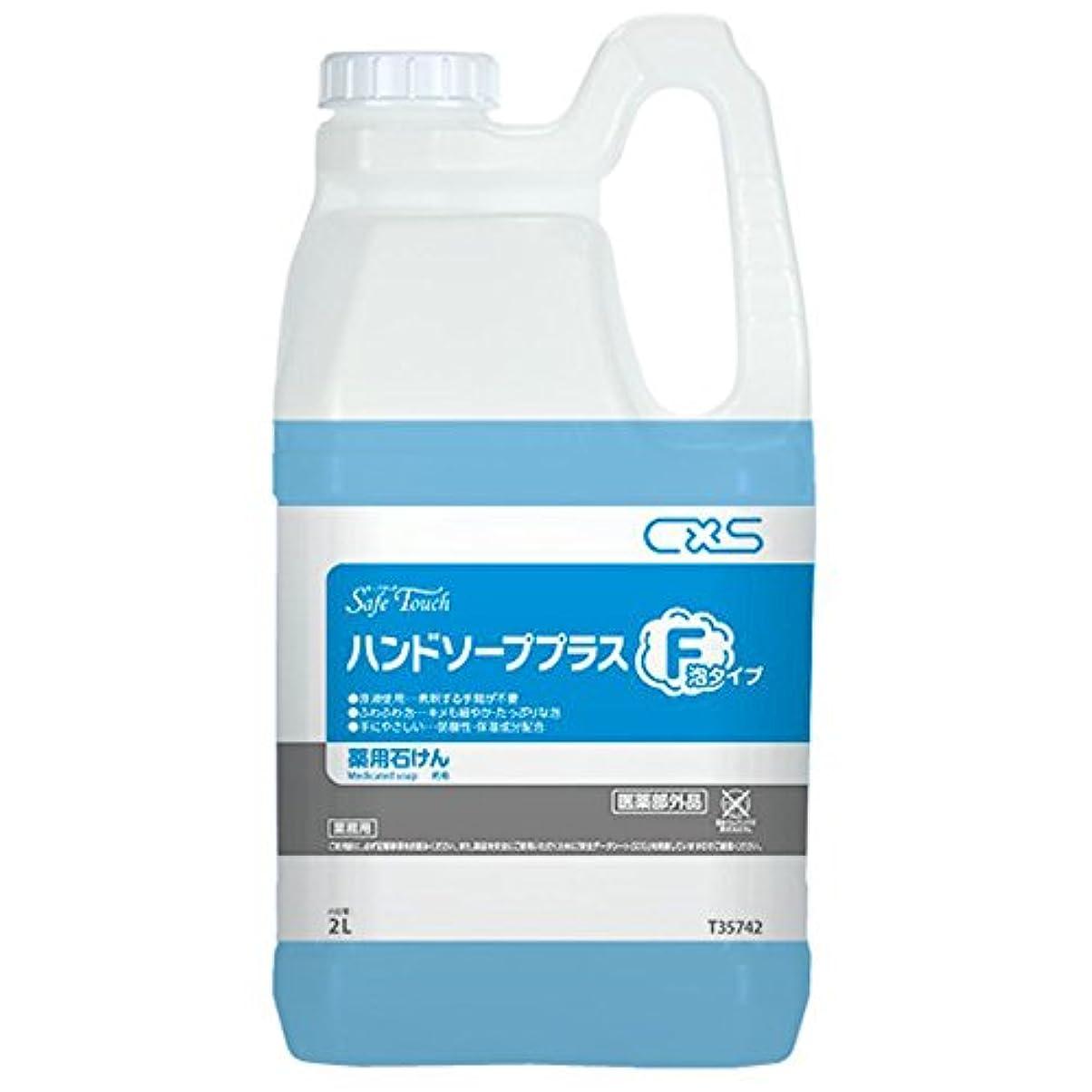 ショートカット分布痛みシーバイエス(C×S) 殺菌?消毒用手洗い石けん セーフタッチハンドソーププラスF 2L