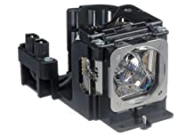 POA-LMP115 / 610 334 9565 Emazne Projector Replacement Lamp for SANYO LP-XU88 / LP-XU88W / PLC-XU75 / PLC-XU78 / PLC-XU88 / PLC-XU88W [Floral] [並行輸入品]
