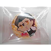 Fate ゼロカフェ~Fate/Zero cafeに集う英霊達~ ufotable 缶バッジ ランサー