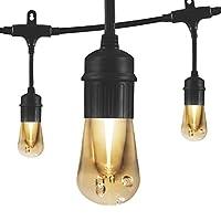 Jasco ヴィンテージシリーズ Enbrighten 文字列ライト 12 ft. | 6 LED Bulbs 35626 1