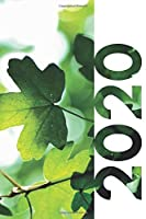 2020: Stocking stuffers for outdoor enthusiast Compact Planner Calendar Organizer Daily Weekly Monthly Student Diary for research on gifts for serious gardeners