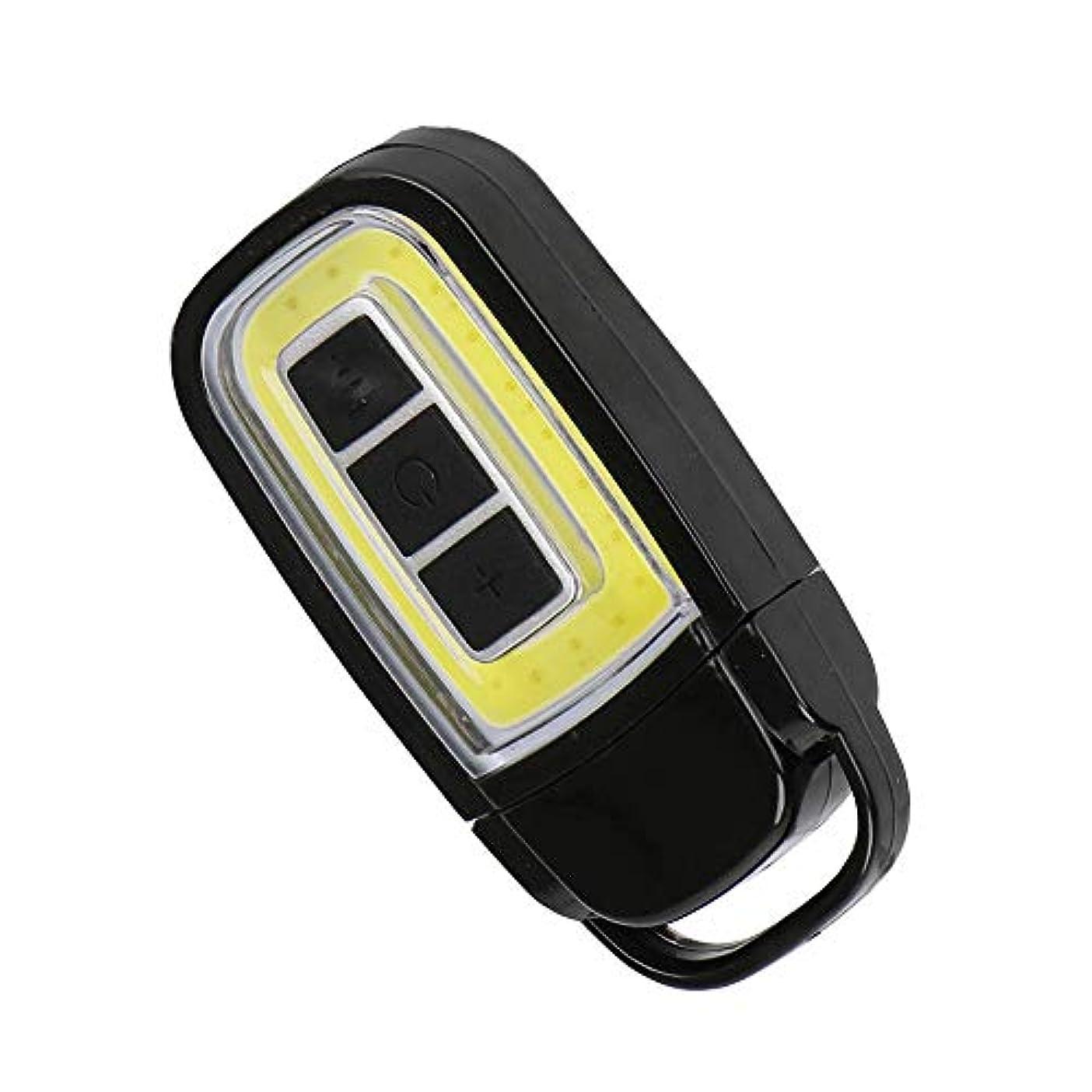 お風呂を持っている本能どきどきミニUSB COB LEDトーチライトキーチェーンEDCライト充電式懐中電灯