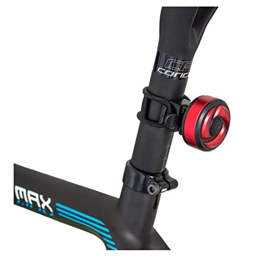 飾り羽名声架空のGORIX ゴリックス 自転車LEDライト AUTO 自動点灯 消灯 LED 明るいライト 100ルーメン USB充電 テールライト リア ライト(GX-TL500G)