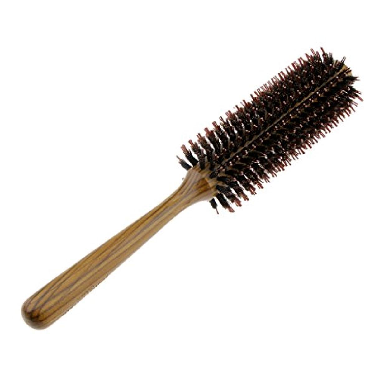 警報警察署誰もFenteer ロールブラシ ヘアブラシ コーム ヘアスタイリング 櫛 くし カール 巻き髪 3サイズ選べる - L
