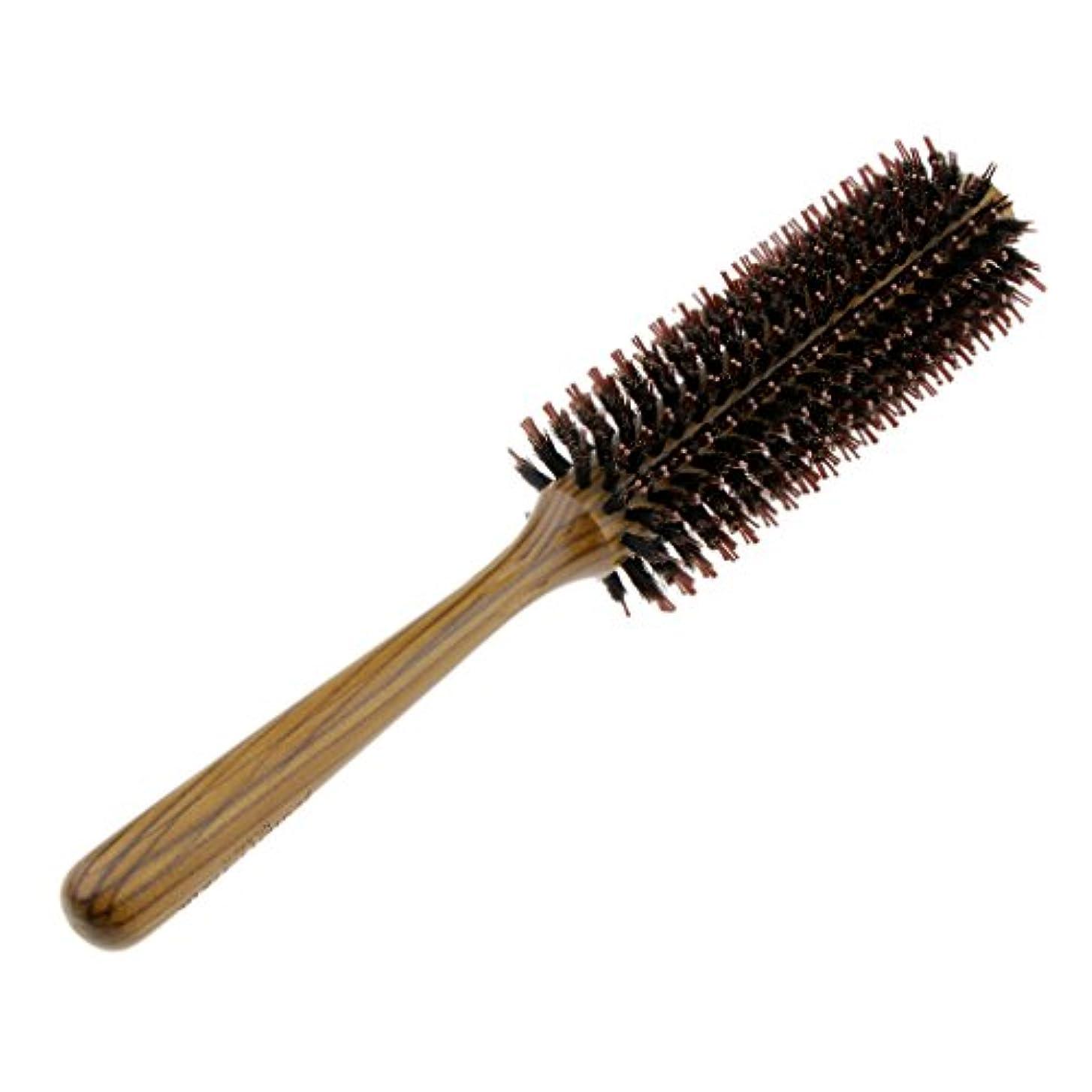 後世暗記する避けられないFenteer ロールブラシ ヘアブラシ コーム ヘアスタイリング 櫛 くし カール 巻き髪 3サイズ選べる - L