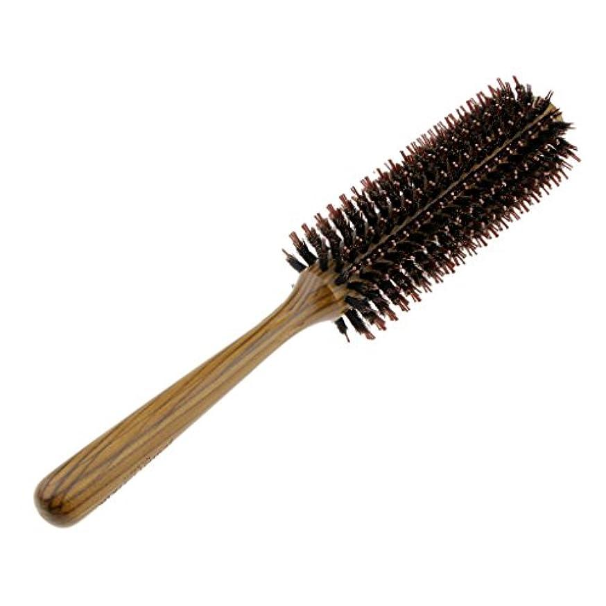 おなかがすいた菊原点Fenteer ロールブラシ ヘアブラシ コーム ヘアスタイリング 櫛 くし カール 巻き髪 3サイズ選べる - L