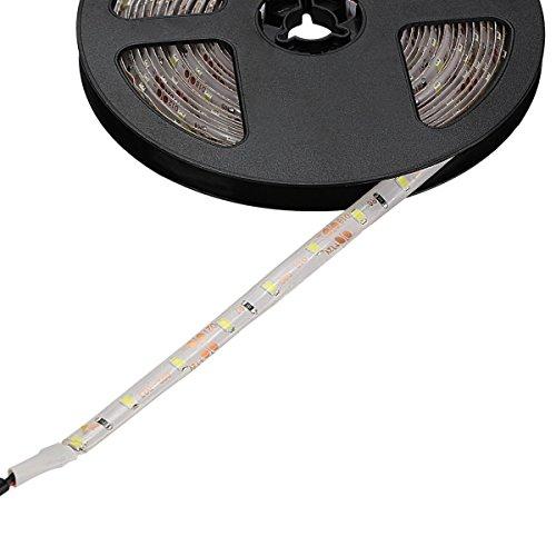 WenTop LEDテープライト 両面テープ SMD 3528防水 DC 12v 5M 300leds 60leds m ホワイトフレキシブルテープライティングテープライト、家、バー、レスト...
