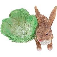 P Prettyia ウサギ妖精 ミニチュア 多肉植物 オーナメント 樹脂 全2色 贈り物 - 褐色