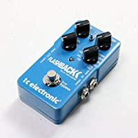 t.c electronic/Flashback Delay & Looper