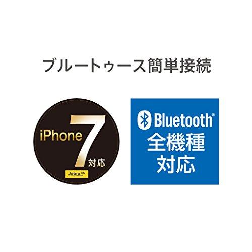 Jabra MINI ブラック ワイヤレス Bluetooth イヤホン ヘッドセット (モノラル) 【日本正規代理店品】