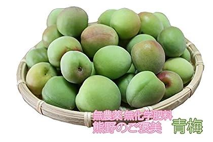 無農薬 南高梅 青梅 30kg 熊野のご褒美 和歌山産 無化学肥料 梅干し 梅酒・梅ジュース用