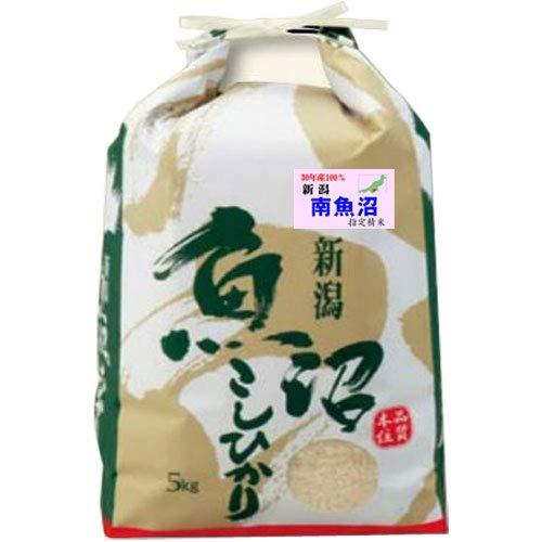 令和 元年産 新米 魚沼産 コシヒカリ 5kg 新潟県 南魚沼 指定米 (玄米のまま(5kg))