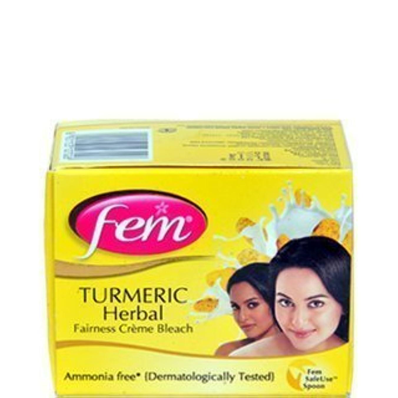 担保いらいらする解放Fem Tumeric Herbal Cream Bleach Ammonia Free Glow Natural Fairness 24g by FEM