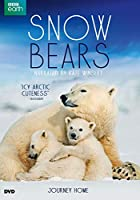 Snow Bears [DVD]