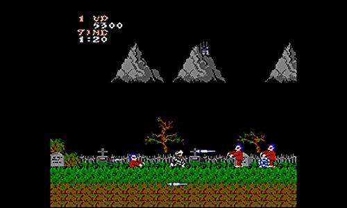 魔界村 [3DSで遊べるファミリーコンピュータソフト][オンラインコード]