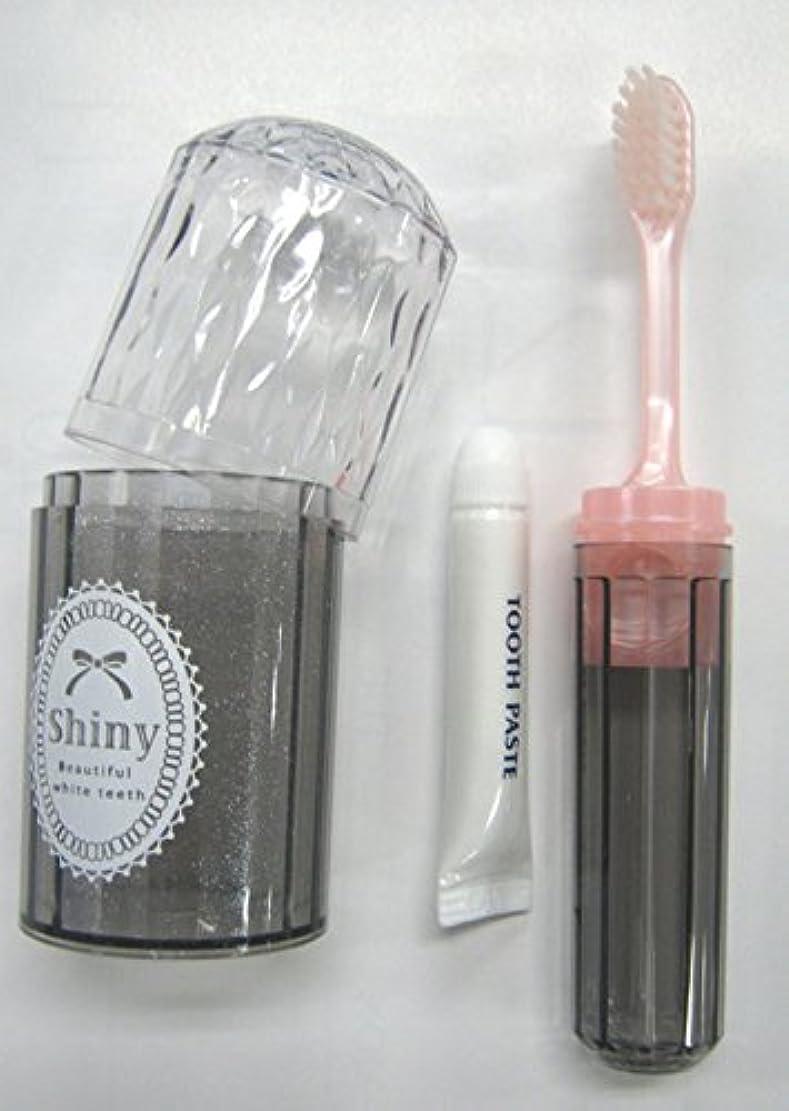 聖なるロックソファーShiny(シャイニー) ダイアカットハブラシセット 歯磨き粉付き