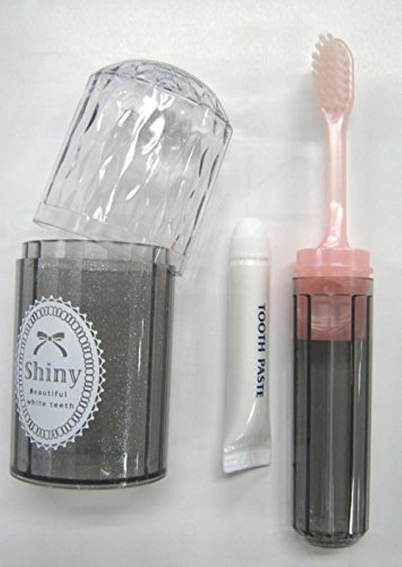 モノグラフハンバーガー秘密のShiny(シャイニー) ダイアカットハブラシセット 歯磨き粉付き