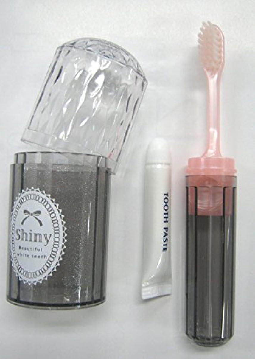 一次プレゼンテーション再生可能Shiny(シャイニー) ダイアカットハブラシセット 歯磨き粉付き