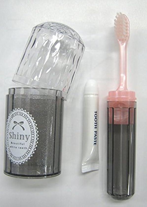 もちろんスクリュー変位Shiny(シャイニー) ダイアカットハブラシセット 歯磨き粉付き