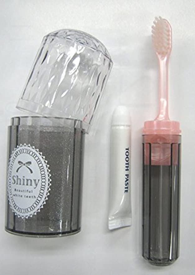 傷つきやすい積極的に敏感なShiny(シャイニー) ダイアカットハブラシセット 歯磨き粉付き