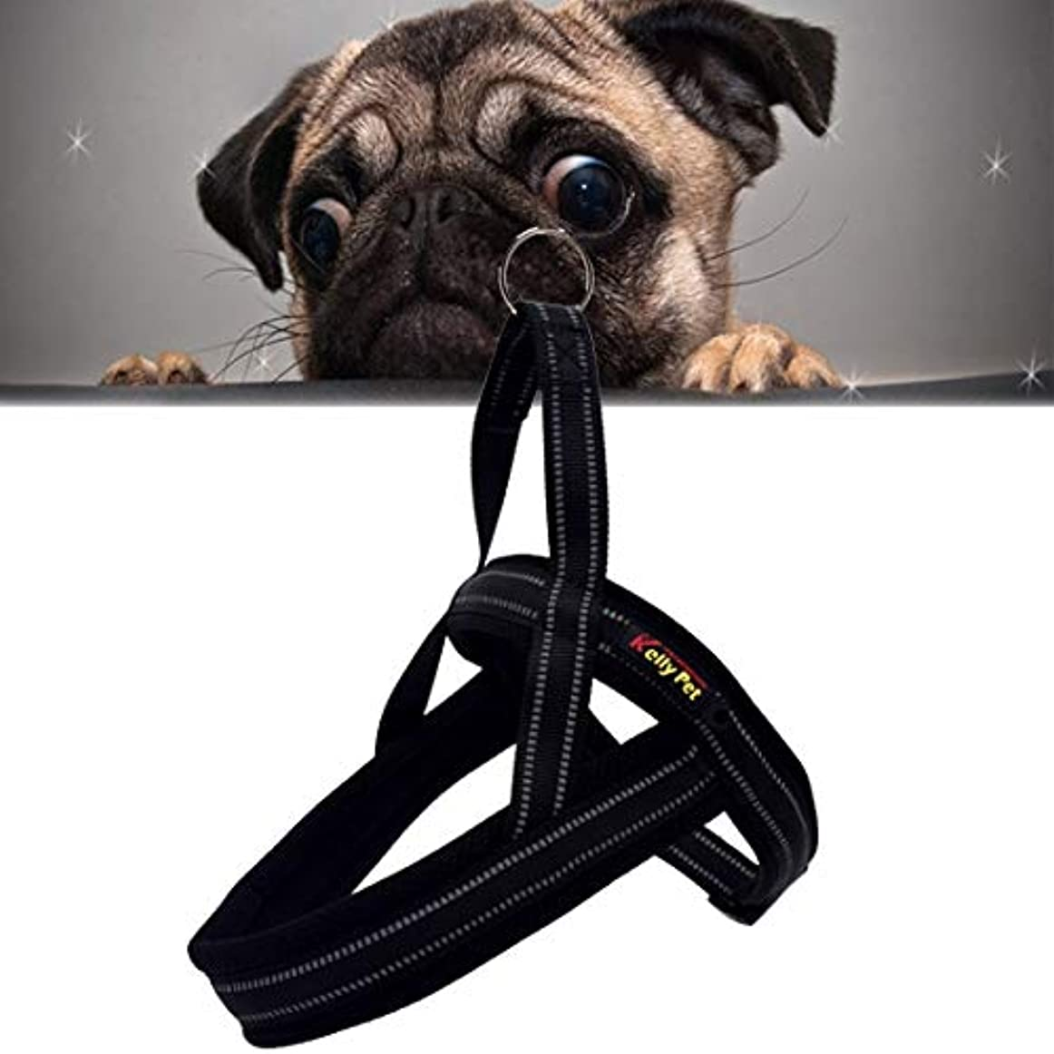 拘束する支払う確立KANEED ペットハーネス 中小型犬 猫 散歩 お出かけ用 ペット犬A7反射ポリエステル胸ハーネスリードリーシュ牽引ビッグドッグセーフティチェーンロープカラー、サイズ:XS、2.0 * 42 * 50cm (色 : Black)