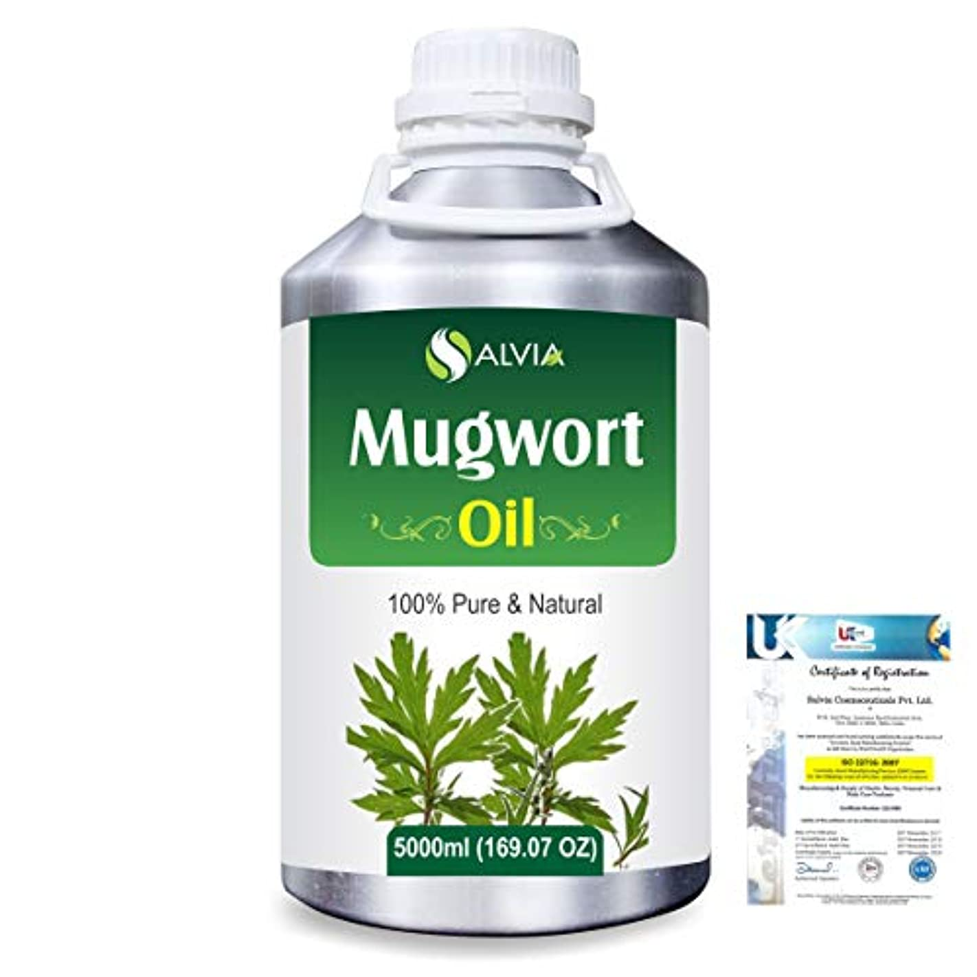 ロケーション操縦する事実Mugwort (Artemisia vulgaris) 100% Natural Pure Essential Oil 5000ml/169fl.oz.