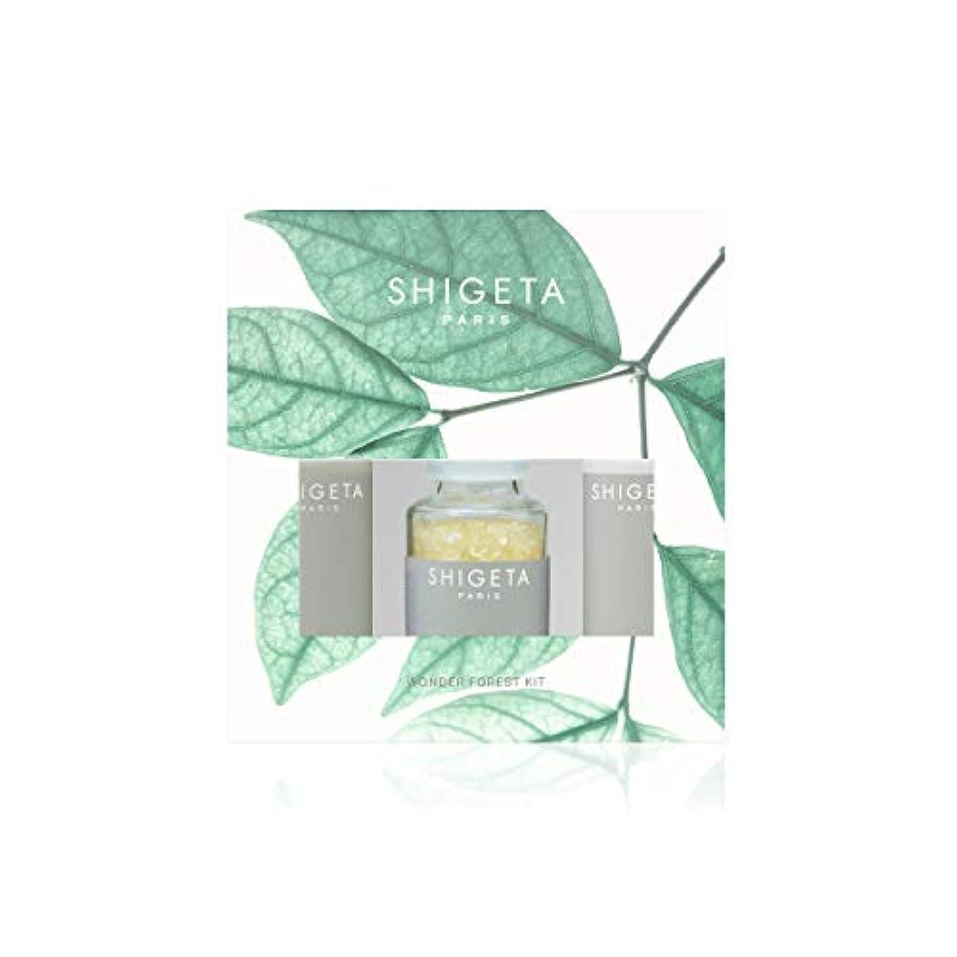 終点電気陽性化学SHIGETA(シゲタ) Wonder Forest Kit