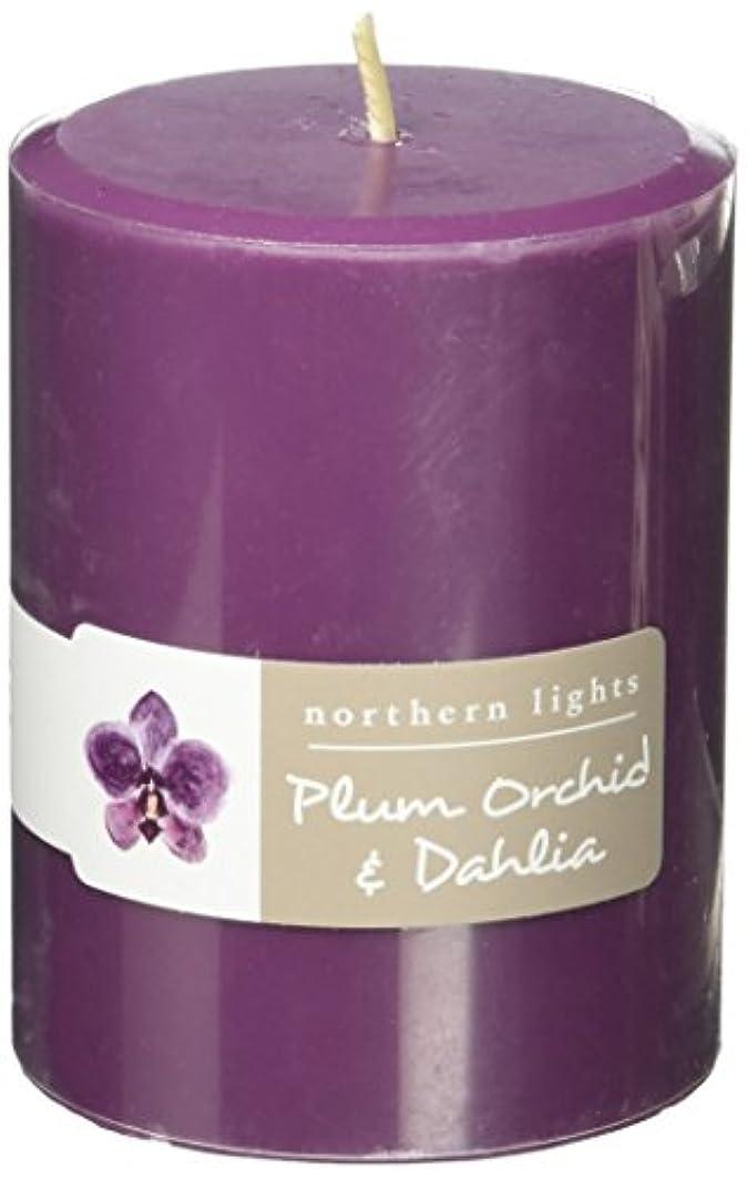 デモンストレーションキモい暗殺Northern Lights Candles Plum Orchid &ダリアFragranceパレットPillar Candle、3 x 4