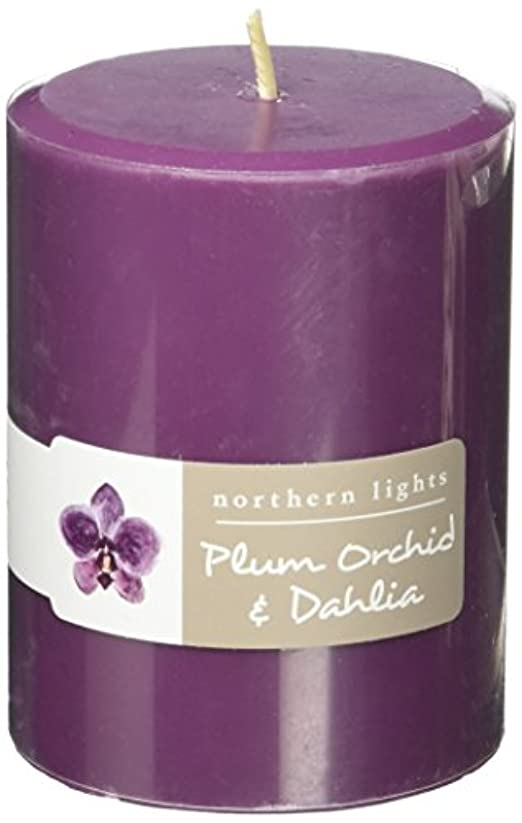 固体粒嵐Northern Lights Candles Plum Orchid &ダリアFragranceパレットPillar Candle、3 x 4