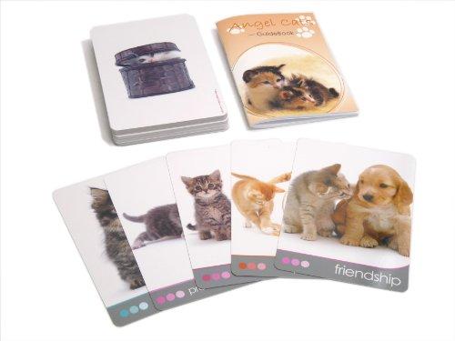 Angel Cats-こねこたちからの45枚のメッセージカード-
