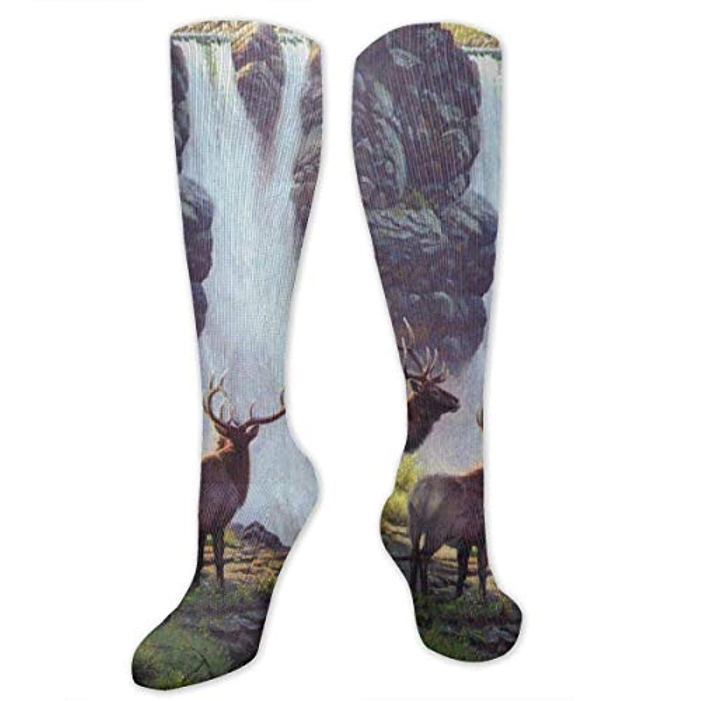 時間とともに眩惑するぴかぴか靴下,ストッキング,野生のジョーカー,実際,秋の本質,冬必須,サマーウェア&RBXAA Bookcliffs Elk Waterfall Landscape Socks Women's Winter Cotton Long...