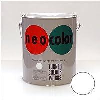 ターナー?ネオカラー 3リットル缶 白