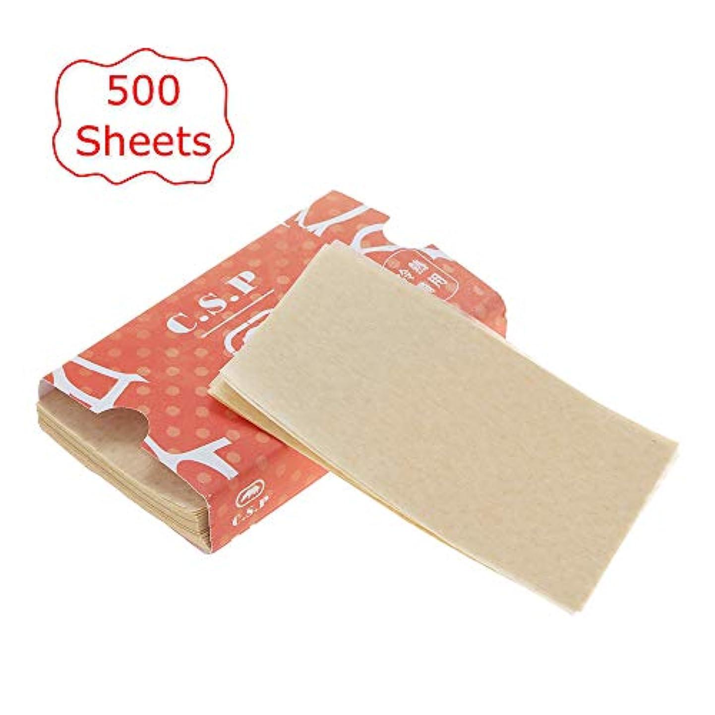 ドローポインタ分析的Decdeal 500枚 ヘアカラー紙 ヘアダイペーパー ヘアパーマツール 自宅 DIY