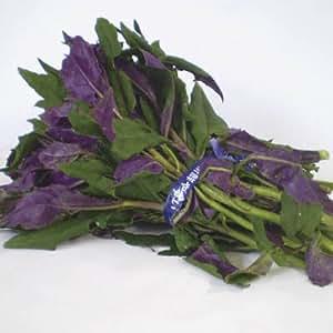 沖縄の伝統野菜 沖縄産ハンダマ 2束(1束・400~500g)