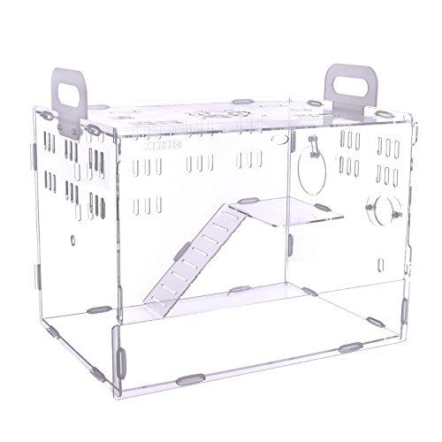 POBO ハムスターケージ ハムスターハウス 階段付き 持ち手付き 通気用の穴いっぱい 透明度有り アクリル製 ハムスター家 (M, 無色透明)