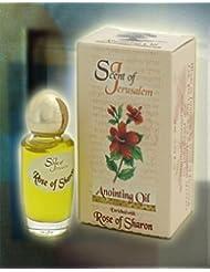 エルサレムの香りAnointing Oil Enriched with Biblicalスパイス0.32 FL OZ byベツレヘムギフトTM