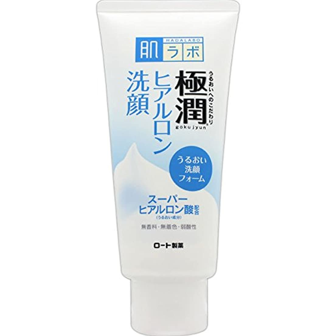 エトナ山刃星肌ラボ 極潤 ヒアルロン洗顔フォーム スーパーヒアルロン酸&吸着型ヒアルロン酸をW配合 100g