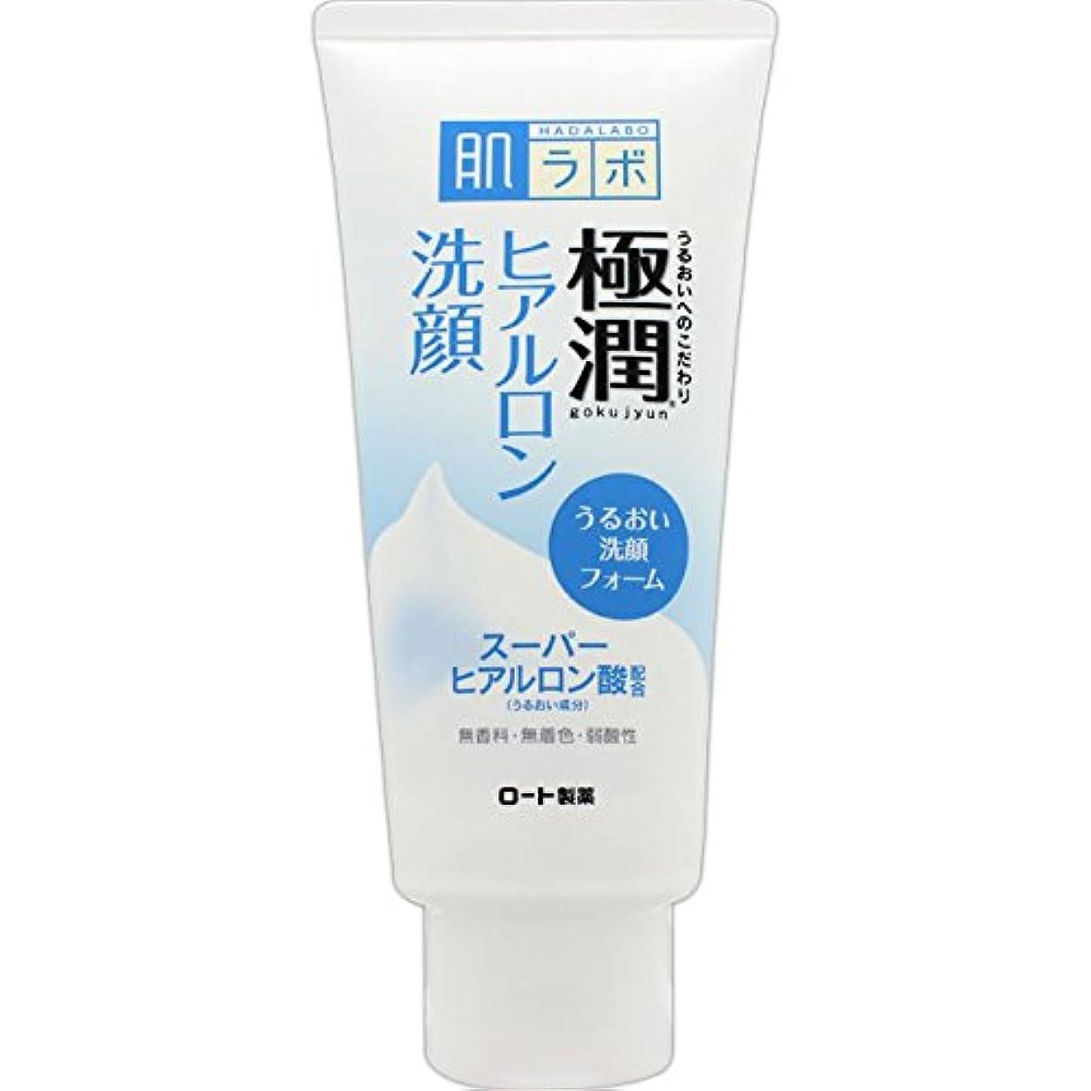 高度アルコールショート肌ラボ 極潤 ヒアルロン洗顔フォーム スーパーヒアルロン酸&吸着型ヒアルロン酸をW配合 100g