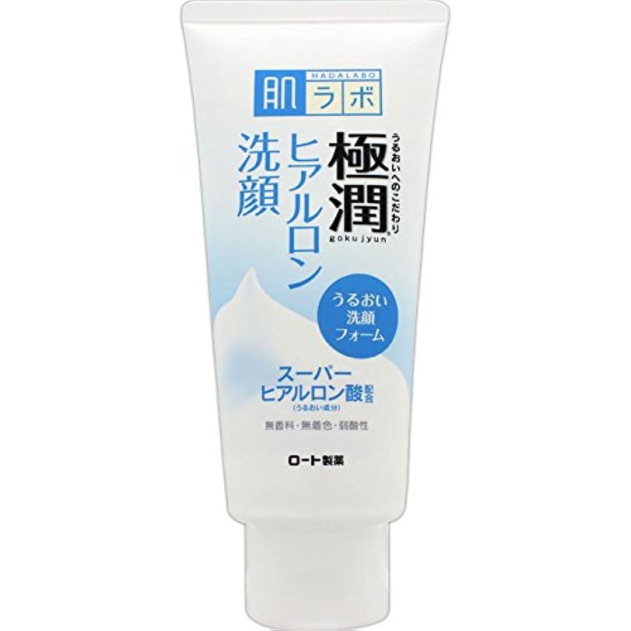 ドラフト耐久効果的肌ラボ 極潤 ヒアルロン洗顔フォーム スーパーヒアルロン酸&吸着型ヒアルロン酸をW配合 100g