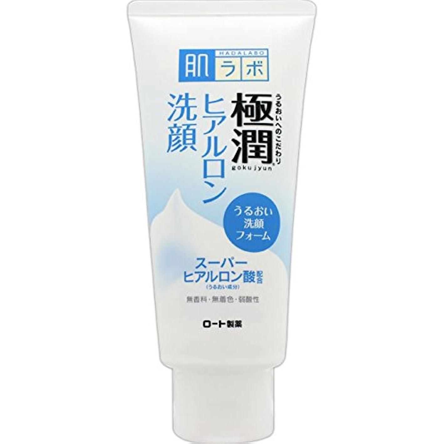 ペンダント調子毒肌ラボ 極潤 ヒアルロン洗顔フォーム スーパーヒアルロン酸&吸着型ヒアルロン酸をW配合 100g