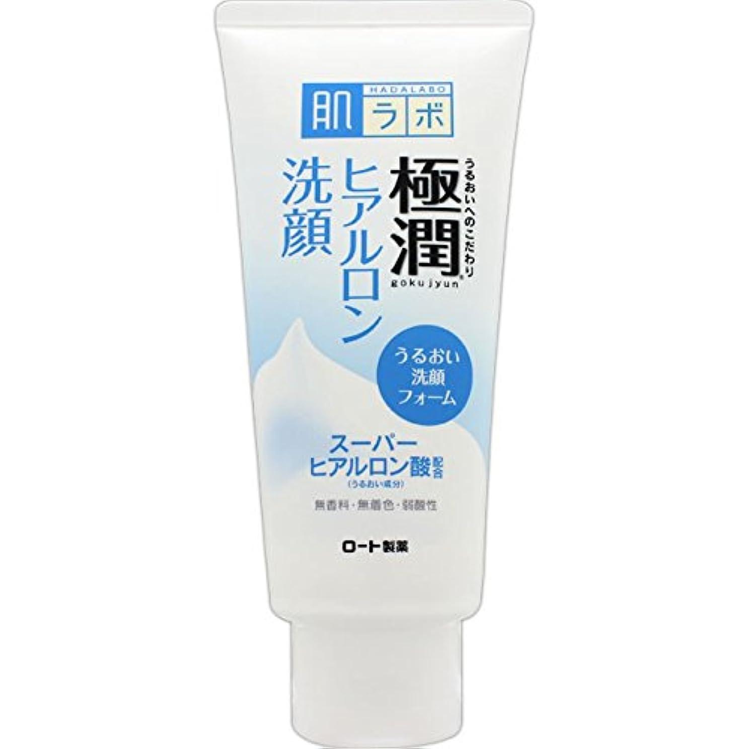 ブル独特の寄付する肌ラボ 極潤 ヒアルロン洗顔フォーム スーパーヒアルロン酸&吸着型ヒアルロン酸をW配合 100g